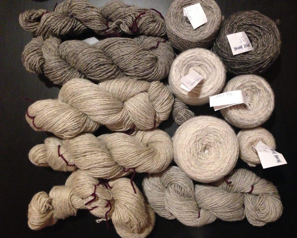 Islandschaf Rohwolle gezupft und versponnen